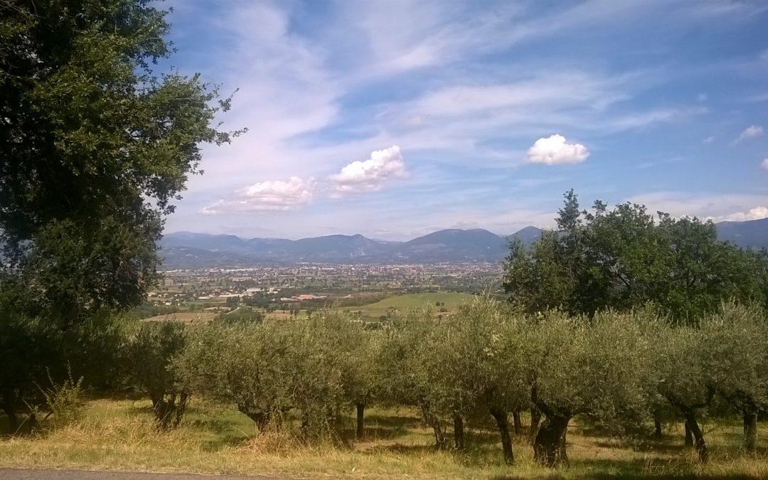 Itinerari umbri: la Porziuncola e la basilica di Santa Maria degli Angeli.