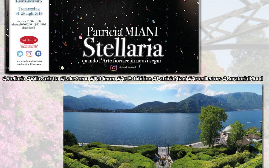 Fino alle Stelle e ritorno. #Stellaria arriva a Villa Carlotta